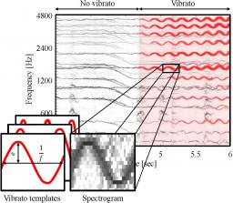 vibrato_detection